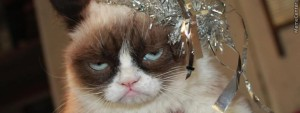 cute-of-the-day-123-is-a-grumpy-cat-new-years-wish_o_4346435